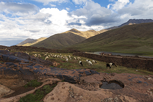 Beautiful Atlas mountain landscape with sheep